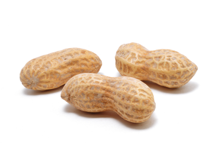 Eating peanuts causes zero health risk in infants